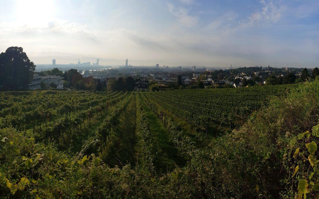 Wien ist die grünste Stadt der Welt